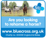 Blue Cross (Warwickshire Horse)