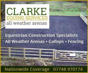 Clarke Equine Services 2019 (Warwickshire Horse)