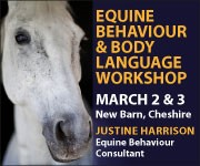 Justine Harrison Workshop March 2019 (Warwickshire Horse)